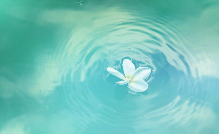 rustig water
